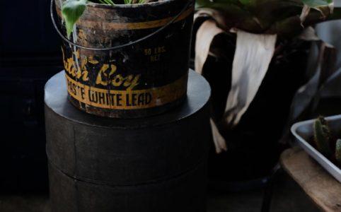大きな古いトタンの缶
