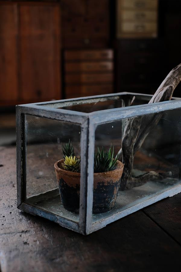 錆びたブリキの水槽